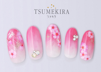 さくら6 八重桜